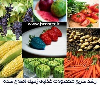 محصولات غذایی ژنتیک اصلاح شده