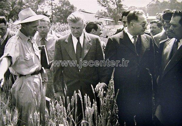نورمن بورلاگ و هنری والاس