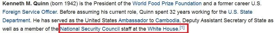 کنت کوئین عضو شورای امنیت ملی آمریکا