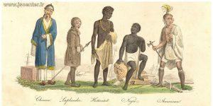 تکوین فرضیههای نژادی