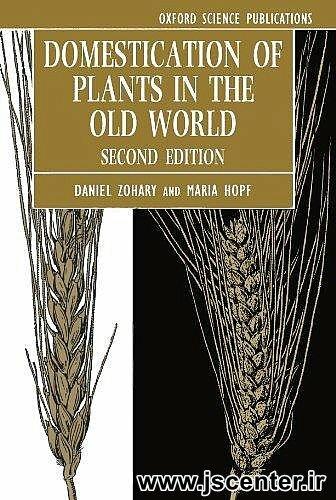 تقسیمات گیاهان ماقبل تاریخ