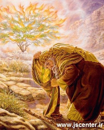 حضرت موسی و درخت شعلهور