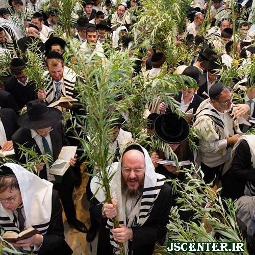 هوشعنا ربا و به زمین زدن شاخههای بید